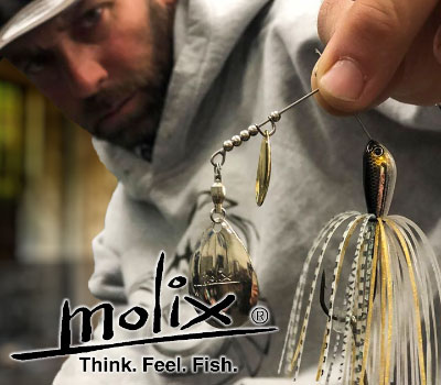 Molix Water Slash Spinnerbait